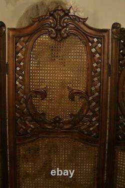 French Antique Rococo Style Mahogany and Rattan Screen Room Divider