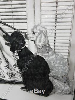 Audrey Hepburn Et 2 Chiens Caniche Image Avec Des Cristaux Liquides, Art & Cadre De Miroir