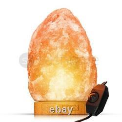 Lampe De Sel De L'himalaya Crystal Pink Rock Salt Lamp Natural Healing 100% Genuine New